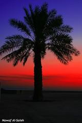(NaWaFoOo) Tags: sky color canon kuwait   q8 nawaf artphoto kwt       400d kwtphoto  alsaleh kuwaitphoto     nawafooo q8photo  nawafphoto kuwaitartphoto kuwaitart wwwnawafphotocom nawafphotocom