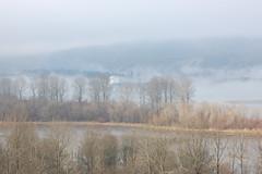 ship-fog-river #3 (KalamaMike) Tags: usa washington ship columbiariver kalama