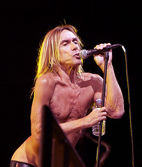 Iggy Pop All Tomorrows Parties (Michelle Heighway) Tags: music festival concert iggy atp pop iggypop 200mm 200mmlens qromagazine photographymichelleheighway alltomorrowsparties2010 iggypopliveatalltomorrowsparties
