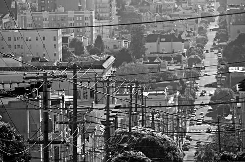 San Francisco 81