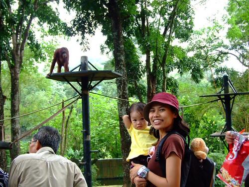 zoo 101