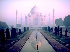460038 - Taj Mahal, Agra, India
