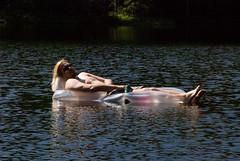 Mark having a float