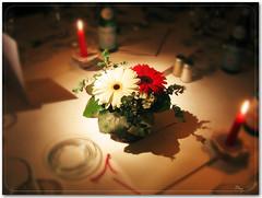 Oh... (vanarts) Tags: flower dinner switzerland candles romance gerbera romantic cy diningtable naturesfinest 10faves outstandingshots challengeyouwinner abigfave