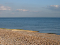 786059029 ca1e534fc7 m July Brighton Beachcombing Masterclass