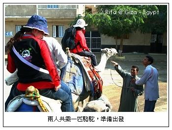 camel-pa-ride