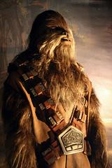 star wars 6 (Karen_O'D) Tags: storm trooper star exhibition ewok jedi lightsaber wars chewbacca wookey