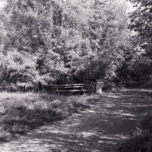 Sittin in the shades of autumn