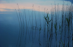 sunrise 05:07 (~martin) Tags: blue lake water sunrise explore interestingness172 i500 nominiert6x