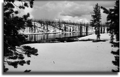 Late Spring In Yellowstone (scrapping61) Tags: trees winter snow river pyramid 2006 yellowstone wyoming legacy tqm netart tistheseason artlove rockpaper amazingamateur theunforgettablepictures breathtakinglandscapes scrapping61 wanderinggypsies daarklands finestimages flickrvault trolledproud trollieexcellence heavensshots earthnaturelove pinnaclephotography