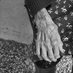 mano (kilometro 00) Tags: street people urban bw hands strada foto hand streetphotography mani bn alluvione mano danni dolcezza biancoenero treviso cosmina solitudine maltempo dignit mogliano trevision fotografidistrada