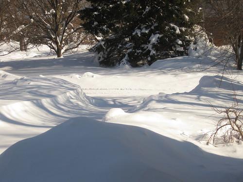 Holy Snow!
