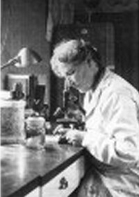Boveri in her lab at Albertus Magnus.