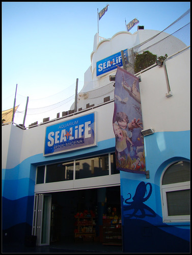 Sea Life Puerto Marina