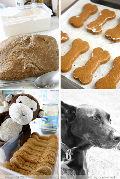 The making of a doggie biscuit, satisfied customer