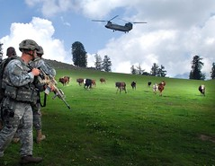 afghanistan (The U.S. Army) Tags: afghanistan soldier army cattle military landing helicopter soldiers lz usarmy wwwarmymil