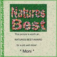 Natures Best Award...from Moni