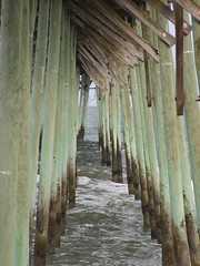 NC - Kure Pier (scott185 (the original)) Tags: nc northcarolina atlanticocean kurebeach kurepier