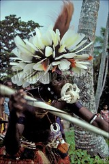 50007054 (wolfgangkaehler) Tags: man men dance dancers dancing traditional feathers feather dancer southpacific tradition papuanewguinea traditionaldress newguinea oceania trobriandislands kiriwinaisland trobriandislpng