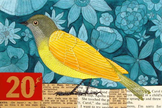 20 cent Bird