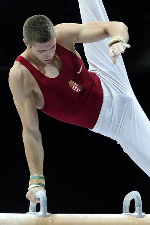 Pictures of Krisztian Berki