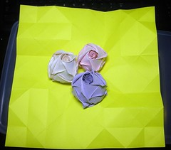 A Yellow rose is about to be formed - in 20 mins (The Gift of Gifts) Tags: happiness thankful grateful kindness valentinesday sincerity paperrose diamondrose origamirose  artrose rosasdepapel  livrerose  papierrose giftofgifts giyhng giftofgift giftofgiftsrose  piparardaigh roseenpapier papierstieg papprrose   paprovre thegiftofgiftsrose thegiftofgiftrose beautyandthebeastrose thegiftofgifts gg papierrosen    rosedicarta  kertasmawar katgller  papirrua paprrzsa  letrrose raamatrose piparrose    cartearose rose karatasirose papperrose papurrose giftofgiftsrosehotmailcom
