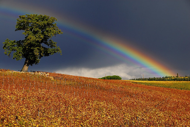 Tuscan Landscape - Fall with rainbow