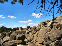 Rocks and trees (Refocus Photography) Tags: trees tree rock outside outdoors rocks branches hill boulder boulders