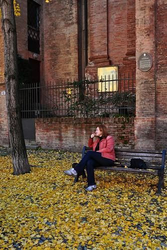 Golden autumn in Bologna