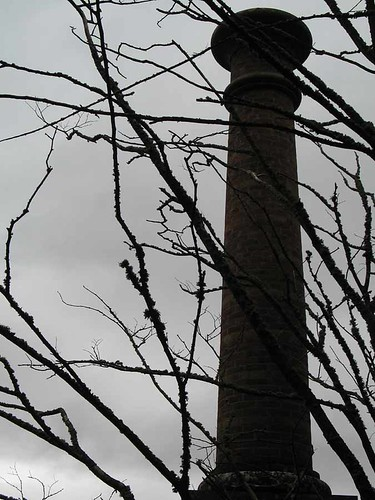 Brooding chimney