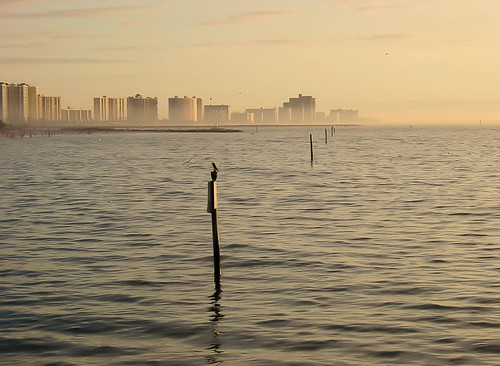 Clearwater Beach 058b