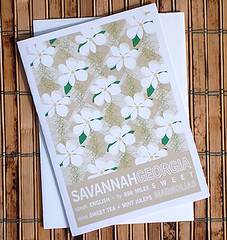 places_Savannah-card