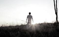 Into The Light (Lee Hanyo) Tags: light sun field woods glare stripes wheat sunny lee hanyo