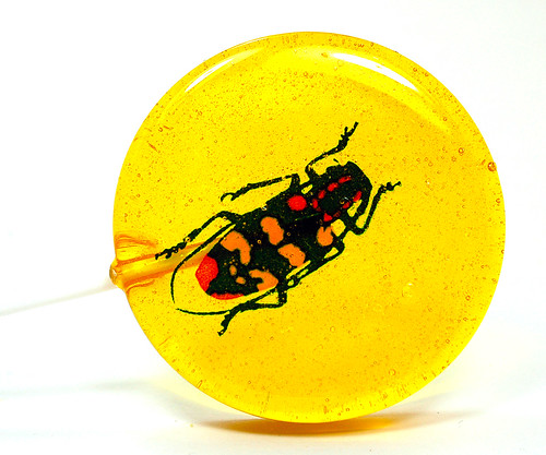 Lemon Bug Lollipop