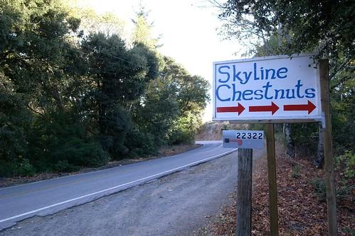 Skyline Chestnuts