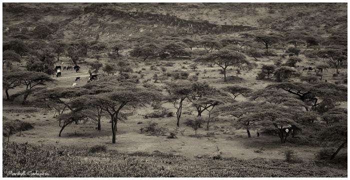 Ethiopian Valley