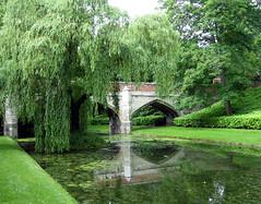 eltham palace bridge moat (brandsq) Tags: reflection london moat eltham