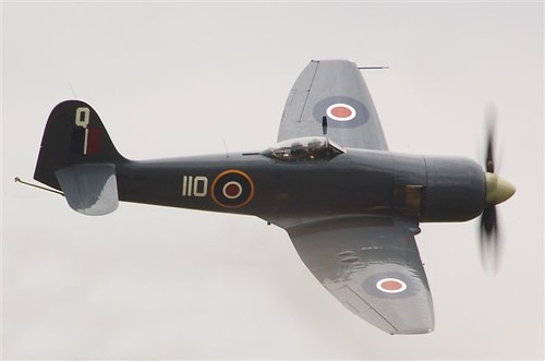 Warbird picture - Hawker Sea Fury FB11