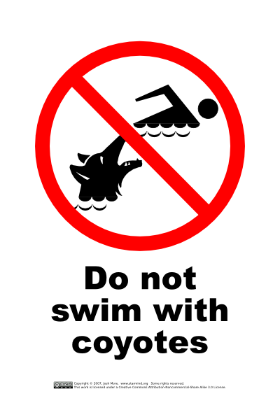 Do Not Swim With Coyotes