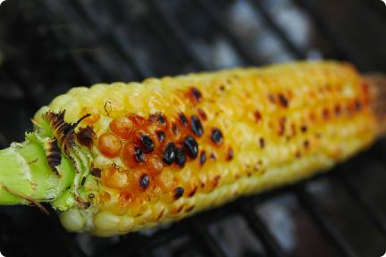 Sapa Corn