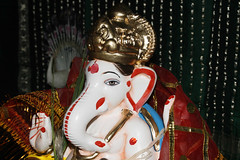_MG_2395 (ultimatebipin) Tags: ganapati bappa moraya