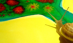 Sunny snail! (Moranga) Tags: art nature animals yellow catchycolors painting happy colorful snail vivid fantasy colourful watercolors watercolours caracoles innerchild moranga caracois fadamoranga supercoloured supercolored mariajoao colourlicious colorlicious caracoletas