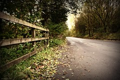 (andrewlee1967) Tags: road uk autumn trees england leaves fence britain gb bardsley andrewlee sigma18200mm mywinners andrewlee1967 canon50d