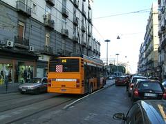 Naples Trolley