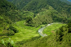 Chico River (laz'andre) Tags: river rice philippines terraces chico ifugao riceterraces cordillera igorot northernphilippines allrightsreserved sibsphoenix