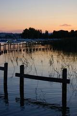 Sunset on the reeds (Hachette) Tags: sunset sky lake france alps reflection annecy reed colors alpes boats evening couleurs lac bateaux an ciel soir roseaux coucherdesoleil yaute hautesavoie albigny naturesfinest petitport anawesomeshot littlearbor