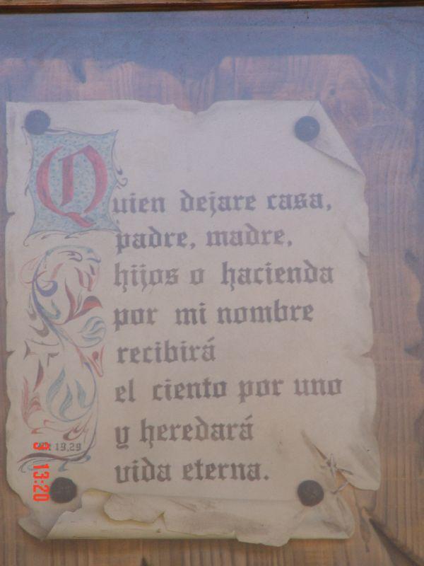 Peregrino 028