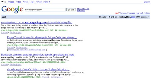 Screenshot of Google Search for estrategyblog.com on 08/08/07