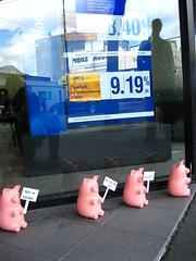 Picketing piggies