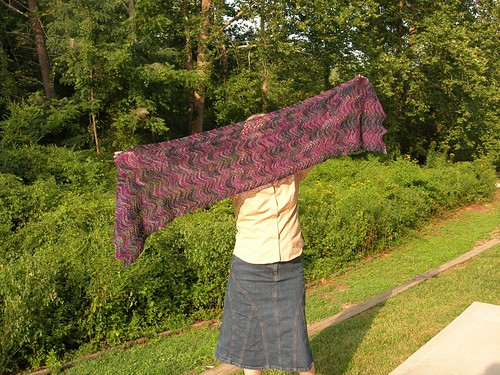 Feather and fan lilac shawl